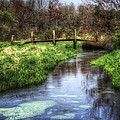 Southards Pond in Spring Print by Vicki Jauron