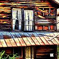 Southern Homestead Poster by Emily Stauring