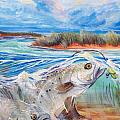 Speckled Trout Print by Jenn Cunningham