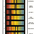 Spectra Chart, Blood Samples, 1894 Print by Science Source