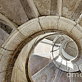 spiral stairway Poster by Carlos Caetano