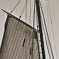 Spirit of South Carolina Schooner Sailboat Sail Print by Dustin K Ryan