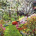 Spring Forest Vision Poster by David Lloyd Glover