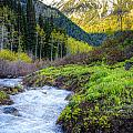 Spring Snow Melt Wasatch Mountains Utah Print by Utah Images