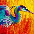 Stalking The Marsh - Great Blue Heron Poster by Marion Rose