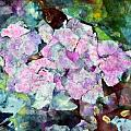 Sticky Geranium Poster by Don  Wright