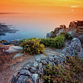 Stone Wall By Atlantic Ocean At Sunset Poster by haaghun