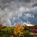 Storms Coming Print by Ronald Lutz