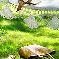Straw hat with brown ribbon laying on hammock Poster by Sandra Cunningham