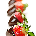Strawberries dipped in chocolate Poster by Elena Elisseeva