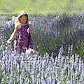 Stroll Through the Lavender Print by Brooke Ryan