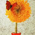 Sunflower and red butterfly Print by Garry Gay