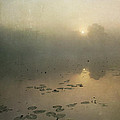 Sunrise through mist Poster by Paul Grand