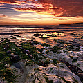 Sunset at Birling Gap Poster by Mark Leader
