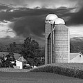 Sunset On The Farm BW Poster by David Dehner