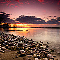 Sunset on the Rocks Print by Cale Best
