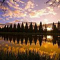 Sunset Reflection In A Park Pond Print by Craig Tuttle