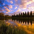 Sunset Reflection On A Pond, Portland Print by Craig Tuttle