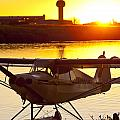 Super Cub at the End of the Day Poster by Tim Grams