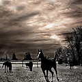 Surreal Horses Infrared Nature  Print by Kathy Fornal