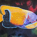 Sutton Fish Print by Terry Gill