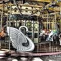 Swan Seat at the Carousel  Poster by Michael Garyet