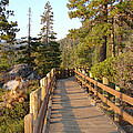 Tahoe Bridge Print by Silvie Kendall