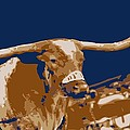 Texas Bevo Color 6 Poster by Scott Kelley