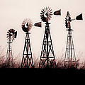 Texas Windmills Poster by Tamyra Ayles