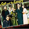 The Cat And The Canary, Front To Back Poster by Everett