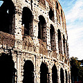 The Colosseum Print by Donna Proctor