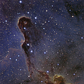 The Elephants Trunk Nebula In The Star Poster by Ken Crawford