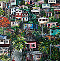 THE HILL     Trinidad  Print by KARIN BEST