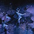 The Joffrey Ballet Dances The Print by Sisse Brimberg
