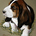 The Little Basset Print by Hanging The Moon