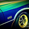 The Muscle Car Oldsmobile 442 Poster by Susanne Van Hulst