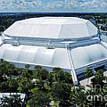 The O'Dome Poster by Joan Carroll