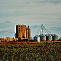 The Old Grain Mill Poster by Kelly Reber