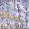 The Poplars Poster by Claude Monet