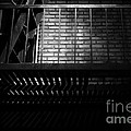 The Rear Window - BW - 7D17463 Poster by Wingsdomain Art and Photography