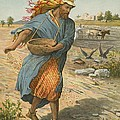 The Sower Sowing The Seed Print by English School