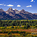 The Tetons II Poster by Robert Bales