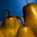 The Three Pears Print by Scott Norris