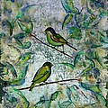 the time of singing birds Poster by Carolyn Doe