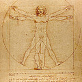 The Vitruvian Man Poster by