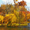 The VT Duck Pond Print by Kathy Jennings