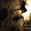 The Vultures Have Gathered In My Dreams . Version 2 . Golden Print by Wingsdomain Art and Photography