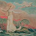 Thel in the Vale of Har Print by William Blake