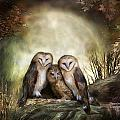 Three Owl Moon Print by Carol Cavalaris