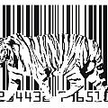 Tiger Barcode by Michael Tompsett
